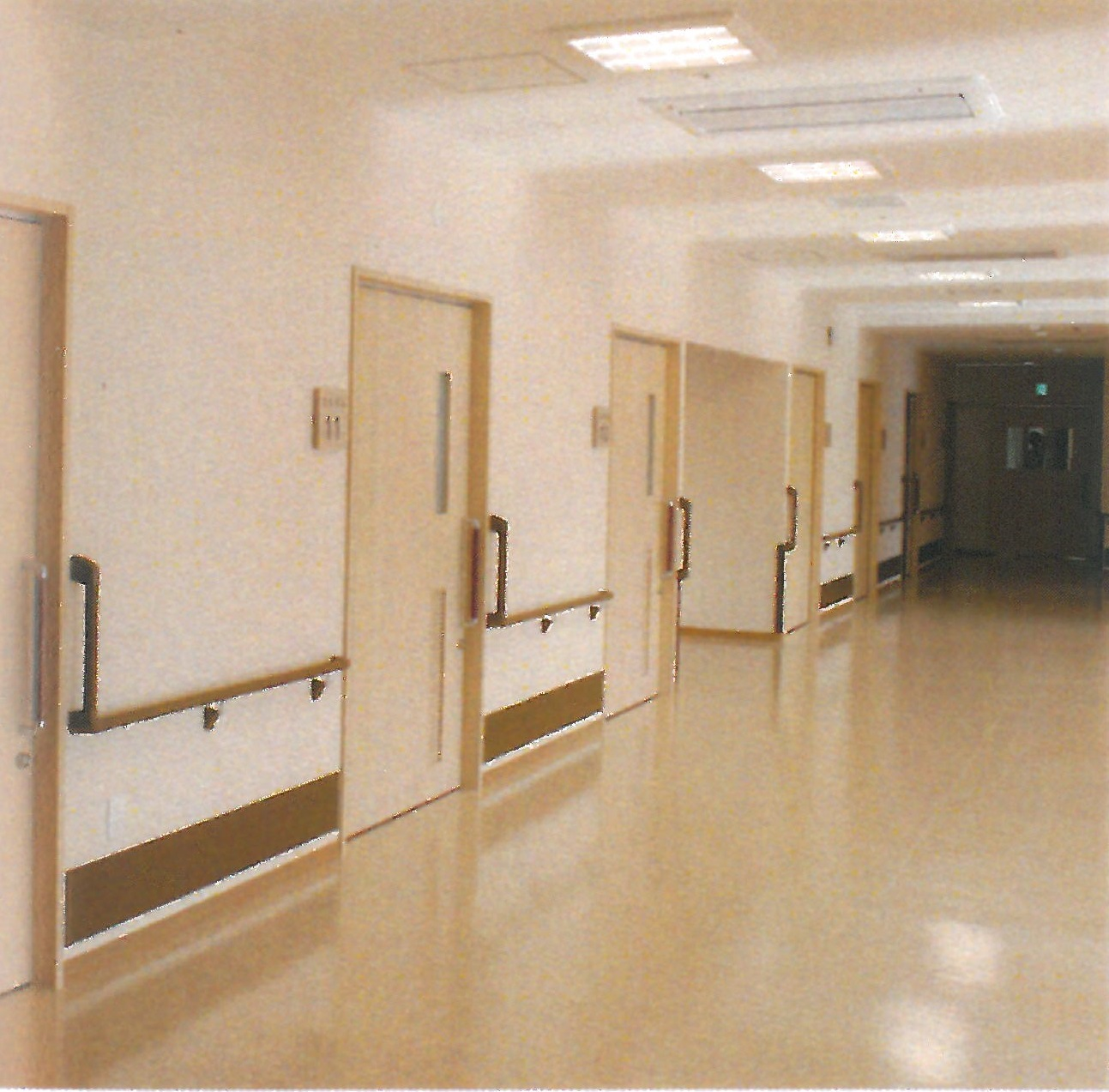 南館 廊下